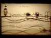 01-cavallinisabatinelli-lapiscina-01