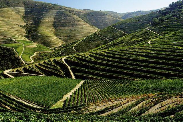 porto_image_douroporto_image_douro_zdroj_foto_global_wines_1