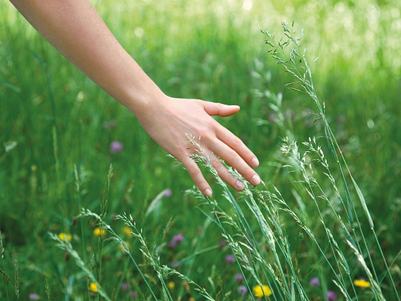 Přírodní kosmetika Marionnaud NATURE Foto: Marionnaud, oficiální zdroj