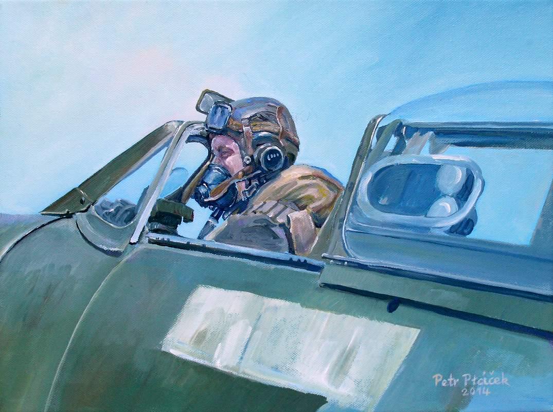 Pilot R.A.F. 30 x 40 cm olej na plátně 2014 Foto: ArtForum, oficiální zdroj
