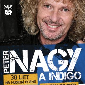 Plakát koncertu Petra Nagye v Divadle Hybernia Oficiální zdroj: Kloboukfilm