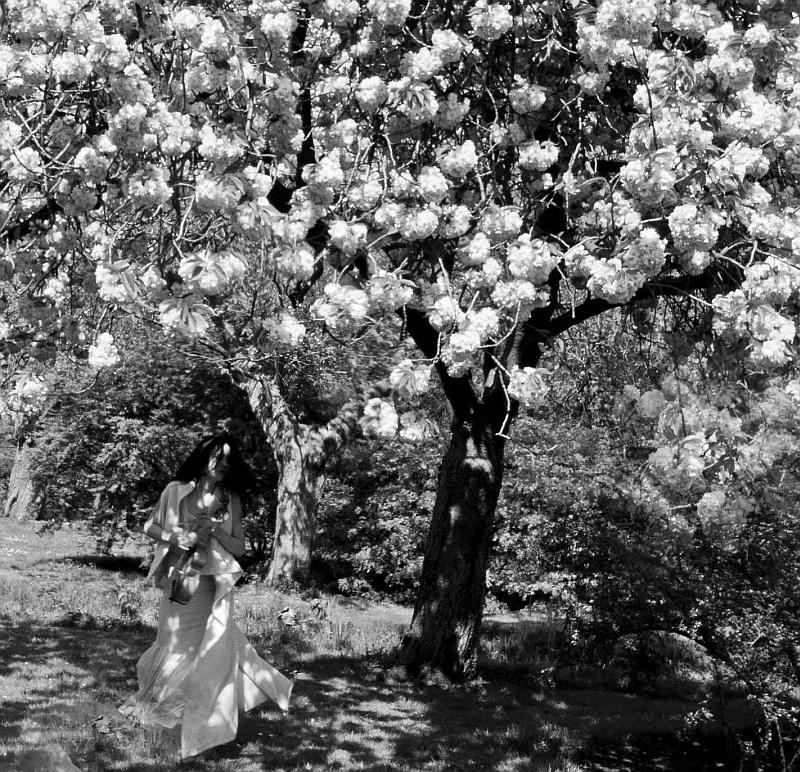 Letní slavnosti staré hudby: gambistka Paulina van Laarhoven  Foto: Sabrina van den Heuvel/Collegium Marianum, oficiální zdroj