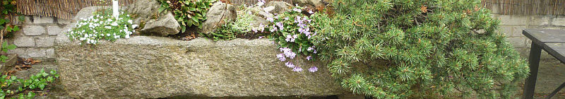 Skalka v kamenném korytu Foto: e-Newspeak