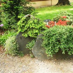 Vrstevnatá skalka z břidlice2