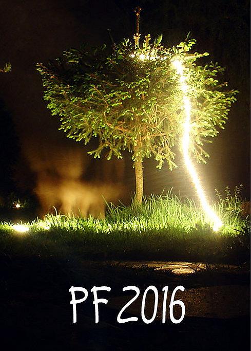 PF 2016 Foto: e-Newspeak