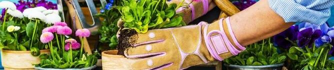 Růstové médium Vermikulit Zahrada pro domácí květiny i zahradu Foto: Grena, oficiální zdroj