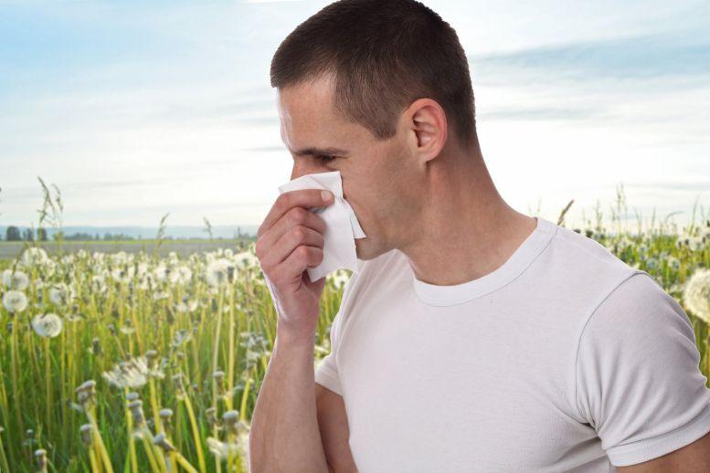 Jarní alergie Foto: Guideline, oficiální zdroj