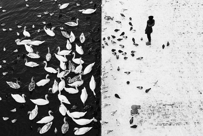 Fotosoutěž NIKON KALENDÁŘ 2018: Finalista loňského ročníku Ivan Svatoš Oficiální zdroj: Nikon
