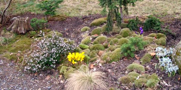 Jarní výstava skalniček Foto: e-Newspeak
