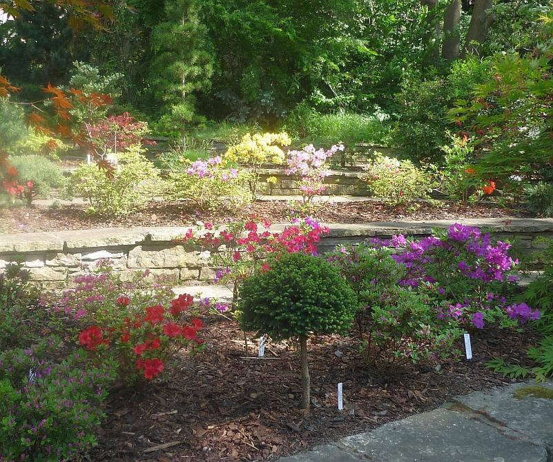 Májová výstava skalniček: přední zahrada Foto: e-Newspeak