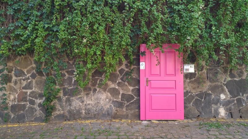 Alice Frydrychová, Petra Kunovská, Marek Vrabec, Tereza Žižková: Nezastihnutelný Vítkov jako zelená oáza v centru města v sobě skrývá velký potenciál a zaslouží si více pozornosti. Získají si tu vaši růžové dveře? Kam asi vedou? Zazvoňte a možná se dozvíte víc… Foto: ©Ondřej Pokoj/Landscape, oficiální zdroj