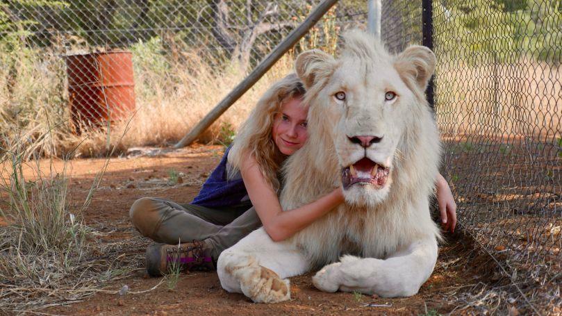 Mia a bílý lev Foto: ©Kevin RichardsonGalatee Films-Outside Films/MFF Praha - Febiofest, oficiální zdroj