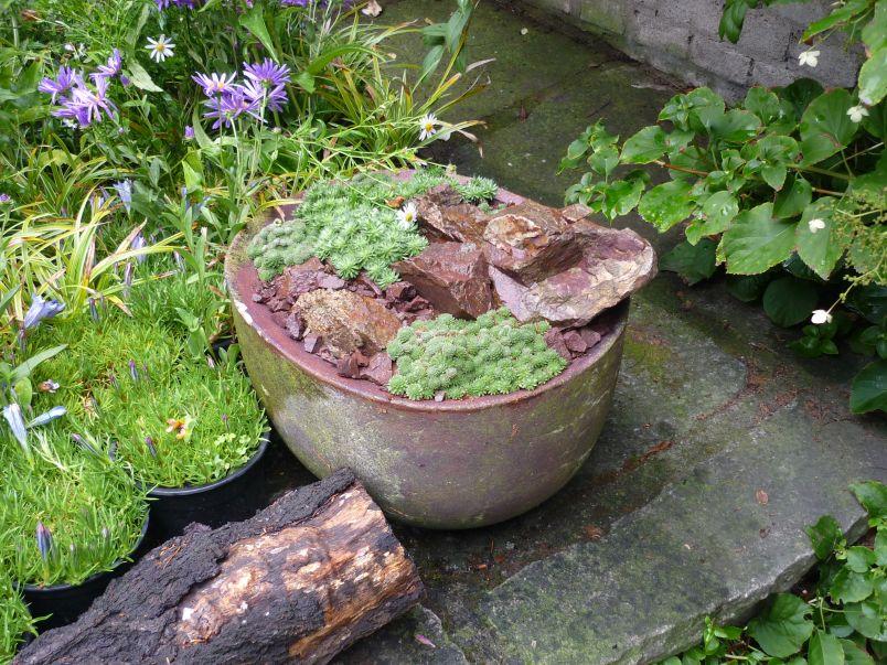 Podzimní výstava skalniček Foto: e-Newspeak